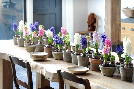 interieurstylist bloemen