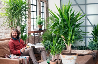 Yukka - stoere Woonplant v/d Maand januari