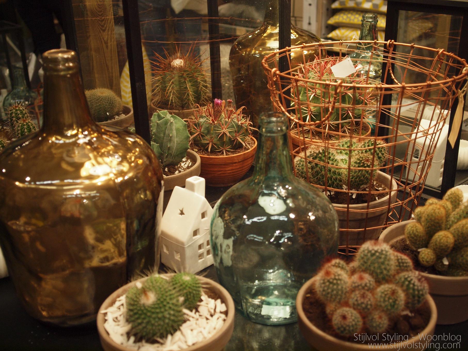 Zuiverende Planten Slaapkamer : Go Green, groen in jouw interieur is ...