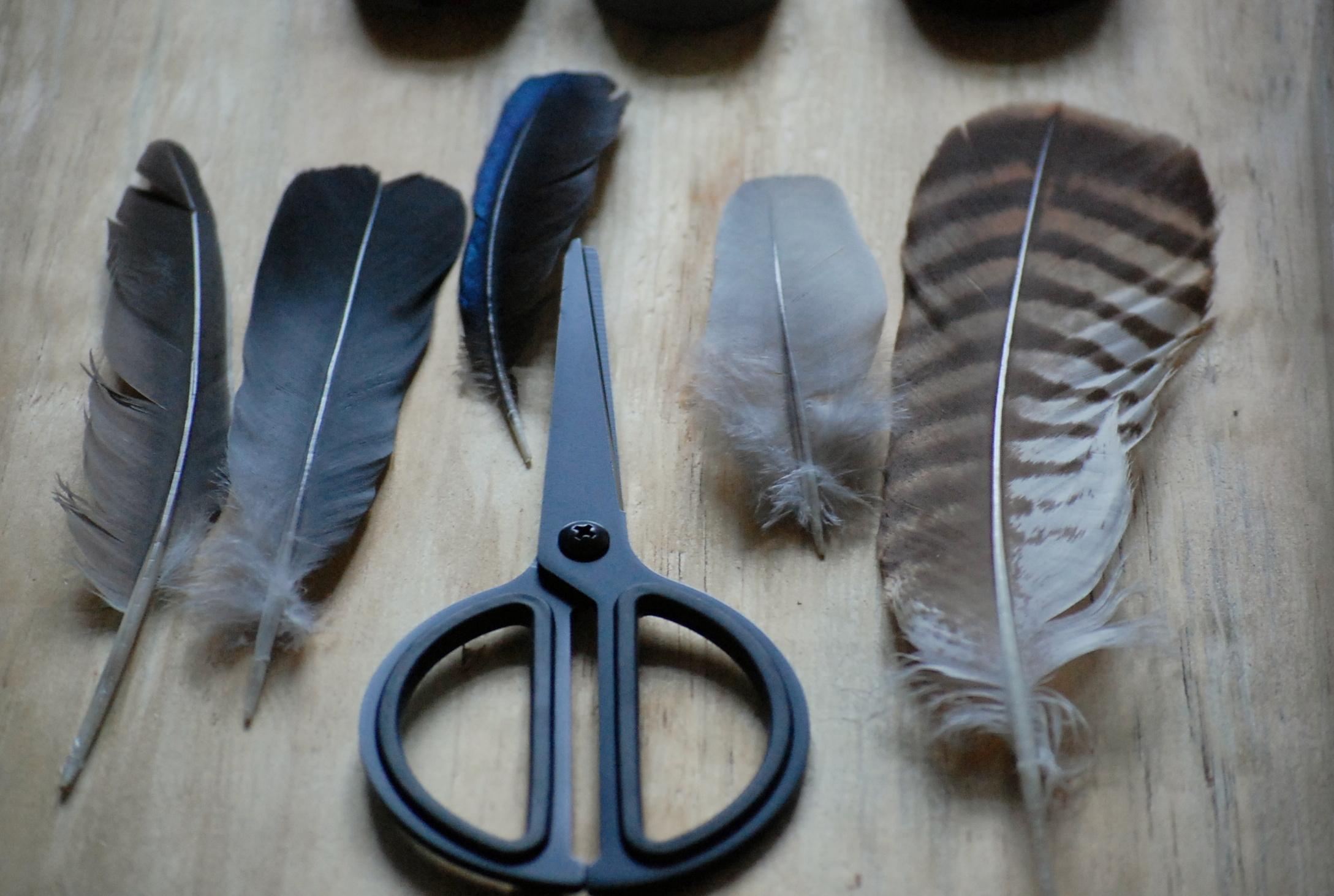 Veren In Huis : Haal de natuur in huis met veren diy inspiraties showhome.nl