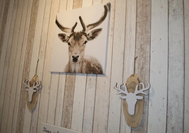 Dieren in huis - Inspiraties - ShowHome.nl