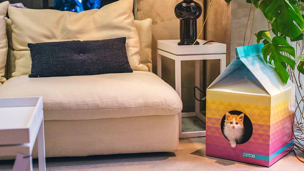 Bed Van Karton : Overnachten in een lodge van karton het kan nu bij stayokay