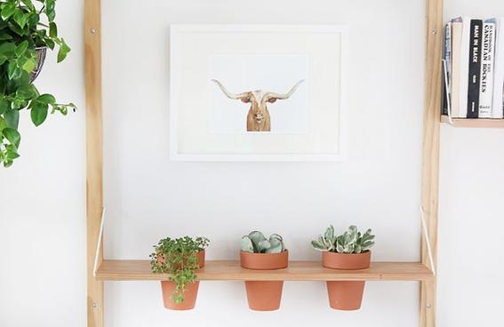 Wandplank Voor Keuken : Maak een wandplank voor planten – Inspiraties – ShowHome.nl