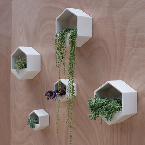 Plantenhanger voor aan de muur inspiraties for Gewei voor aan de muur