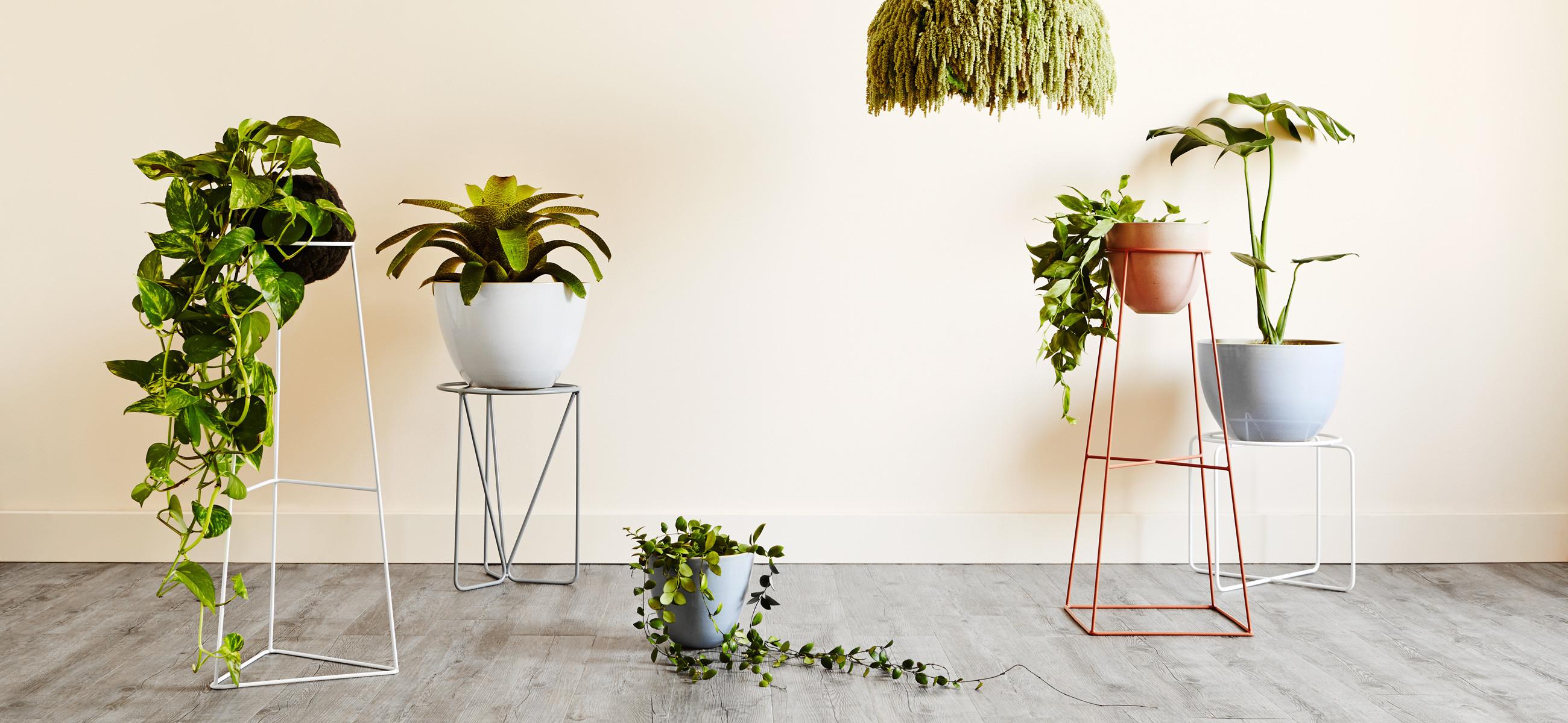 Muurdecoratie Slaapkamer Zelf Maken : Plantenstandaard, zelf maken ...