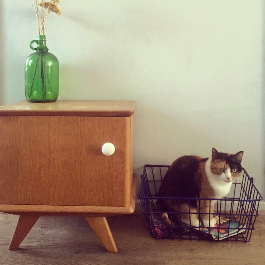 Retro meubels en woonaccessoires inspiraties for Vintage meubels
