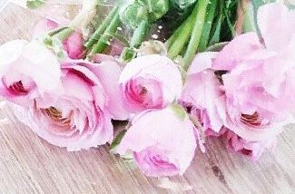 Blog: Bloemen maken blij