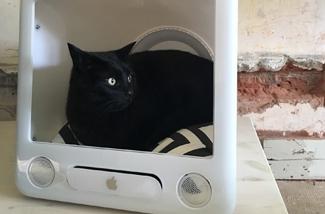 DIY: eMac kattenmandje