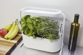 een-design-plantenbak-voor-binnenpret-kl.jpg