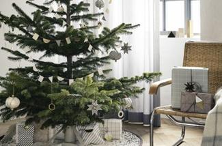 heel veel kerstbomen inspiratie