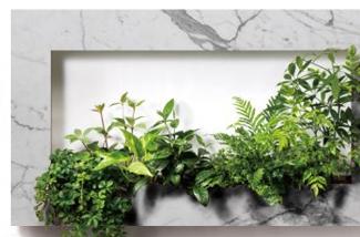 Blog: Indoor tuintje