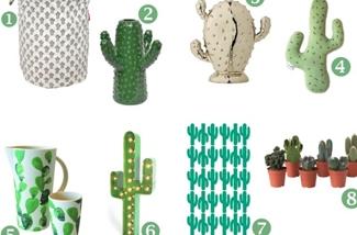 Inspiratie voor de cactus