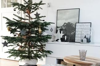 Instagram interieur inspiratie kersteditie!