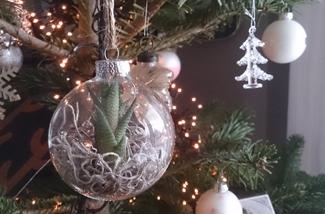 Blog: Kerst 2014