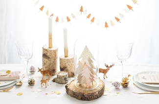 Blog: Kerstdinerstress? Kies voor makkelijk en mooi.