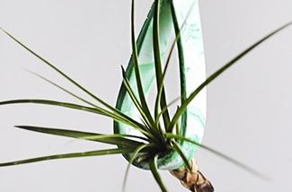 Maak een planthanger van klei