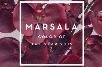 Blog: Marsala = Pantone kleur van het jaar