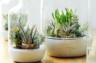 Binnenkijken interieur: Mooi wat planten doen