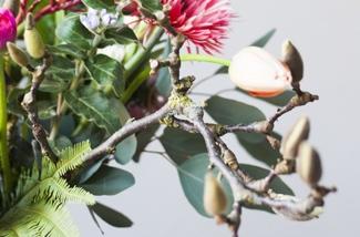 Nieuwe bloemen