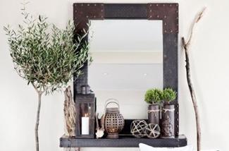 5x een olijfboompje in huis