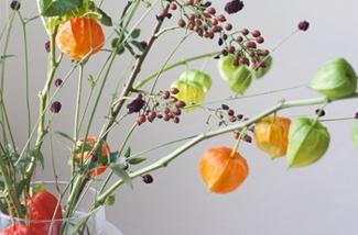 oranje-bloemen-kl.jpg