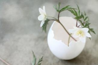 Blog: Pasen het voorjaar in huis