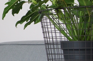 plant-2kl.jpg