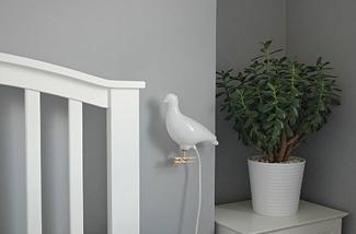 Blog: Plantenzak