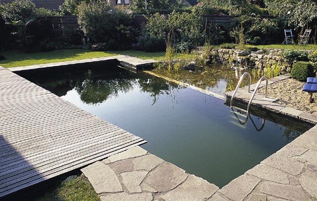 Maak een zwemvijver geniet het hele jaar van water in je tuin