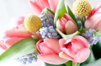 Blog: Bloemen