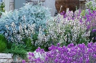 Blog: Je tuin zomerklaar maken in een paar stappen