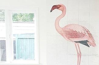 vogels in huis