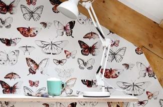 Blog: Vlinders