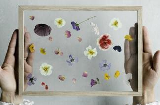 Blog: Wissellijst aan de muur