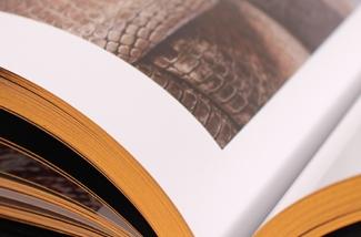 Woonboek: Design Osiris Hertman
