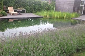 Binnenkijken interieur: Zwemmen in de tuin